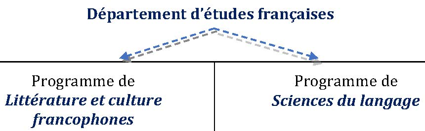 Options des programmes